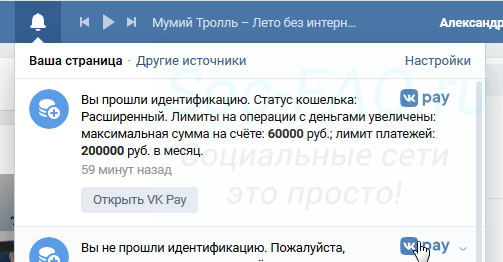 Аккаунт успешно проверен в VK Pay